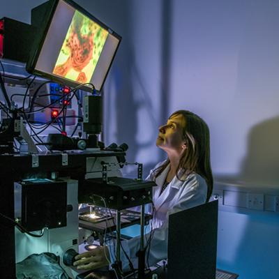 Imaging: investigating the structure of tissue, using a laser