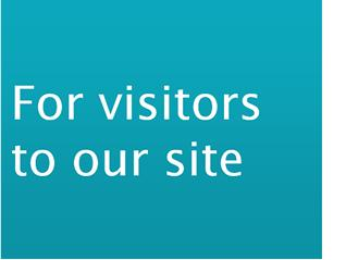 For Visitors to our Site