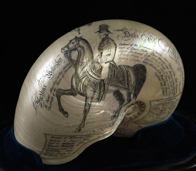 Engraved nautilus shell showing Wellington