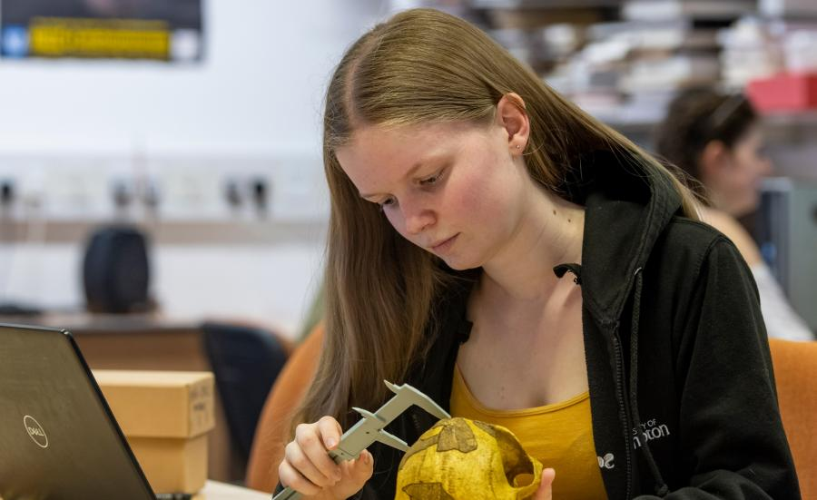 undergraduate archaeology and anthropology student measuring skull