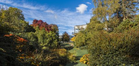 Wide view of Highfield Campus with autumn colours.