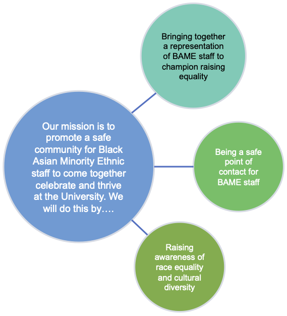 Summary of the aims of the Black Asian Minority Ethnic Staff Network
